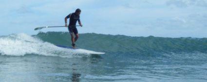 small wave last summer
